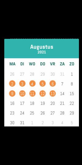 kalender speelplein aalst augustus